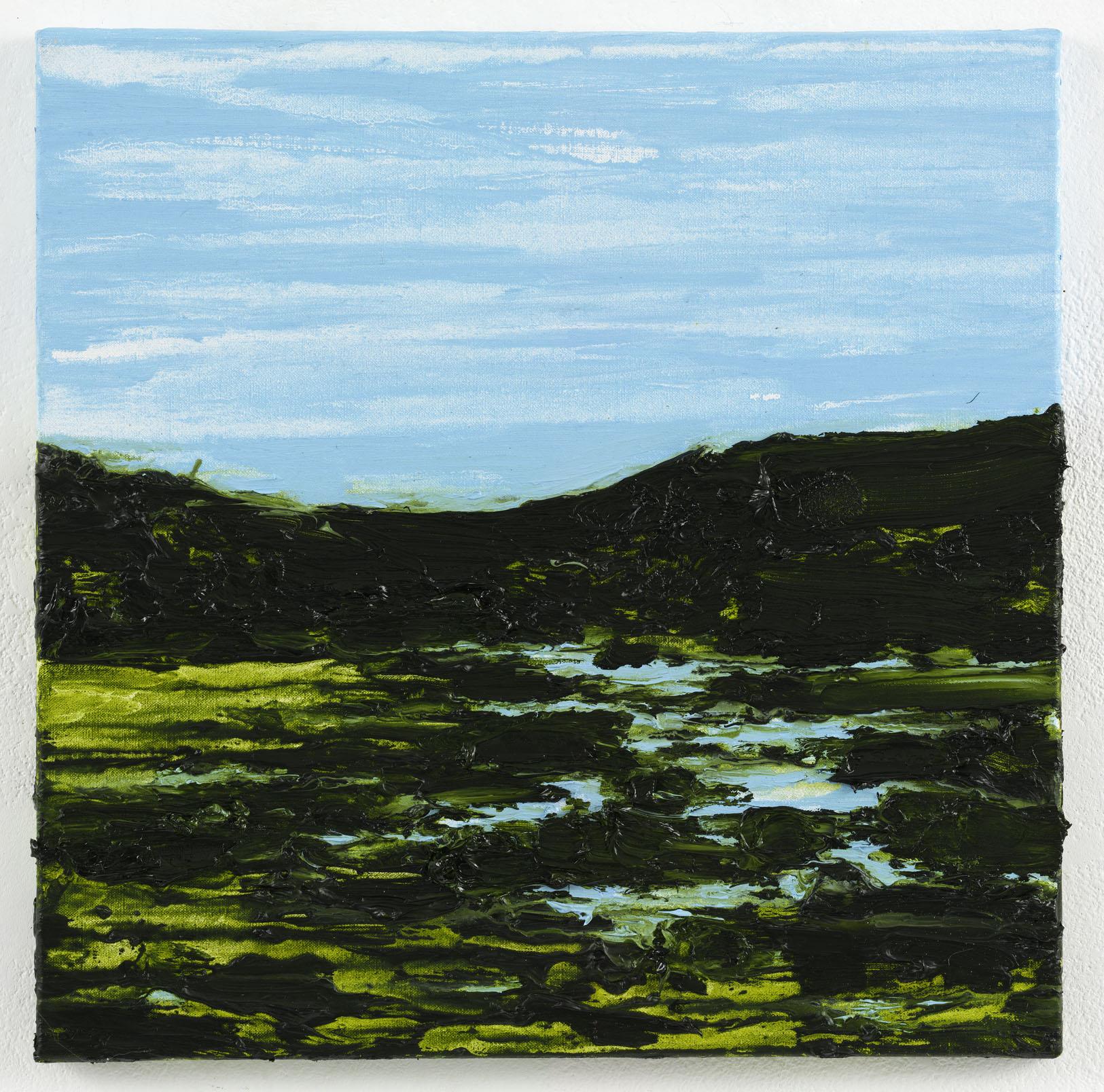 """""""O caminho para a Vila Vicosa III"""" 50 x 50 cm. oil on linen 2010"""