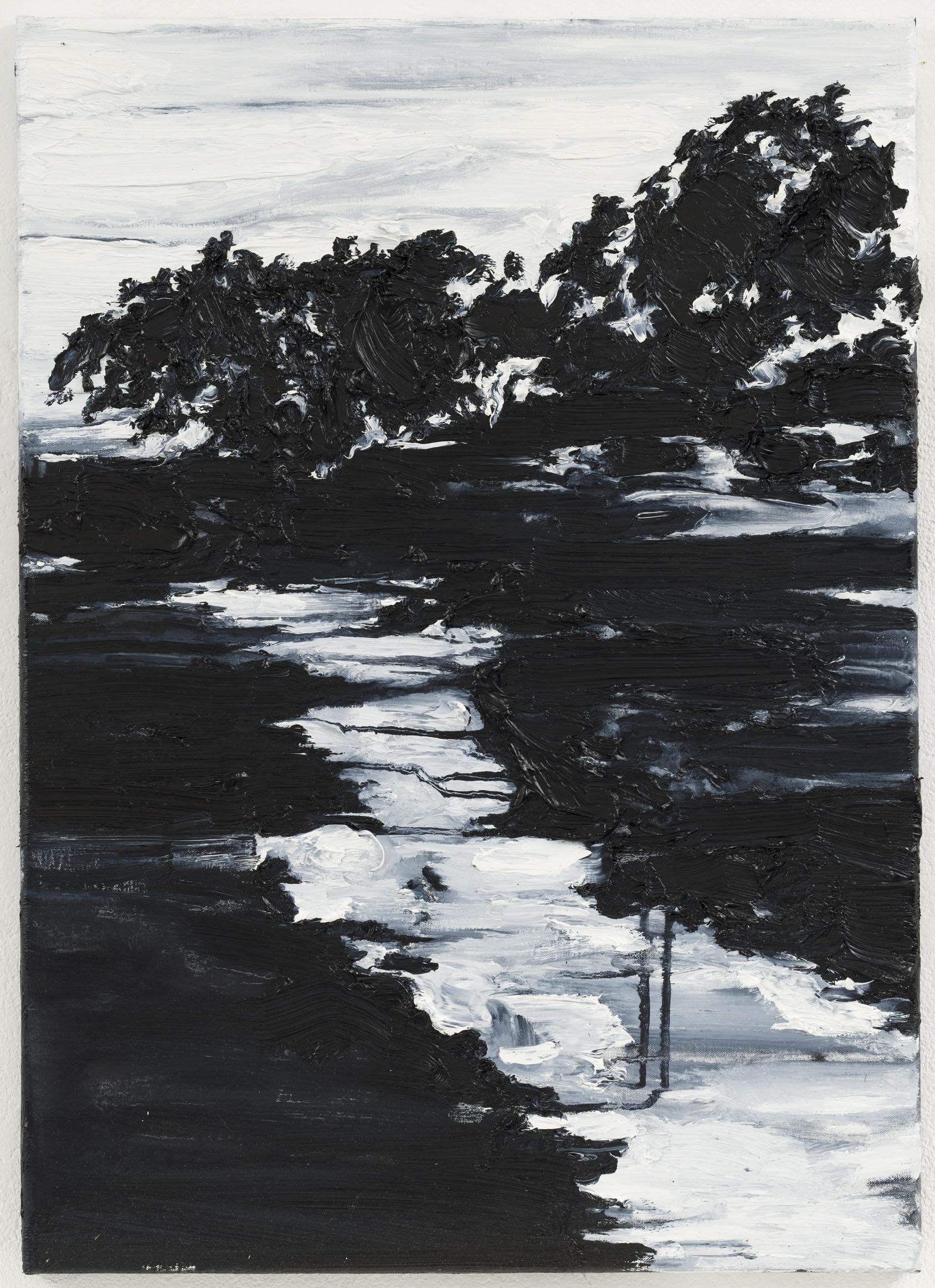 """""""Silva Negra I"""" 70 x 50 cm. oil on linen 2011"""