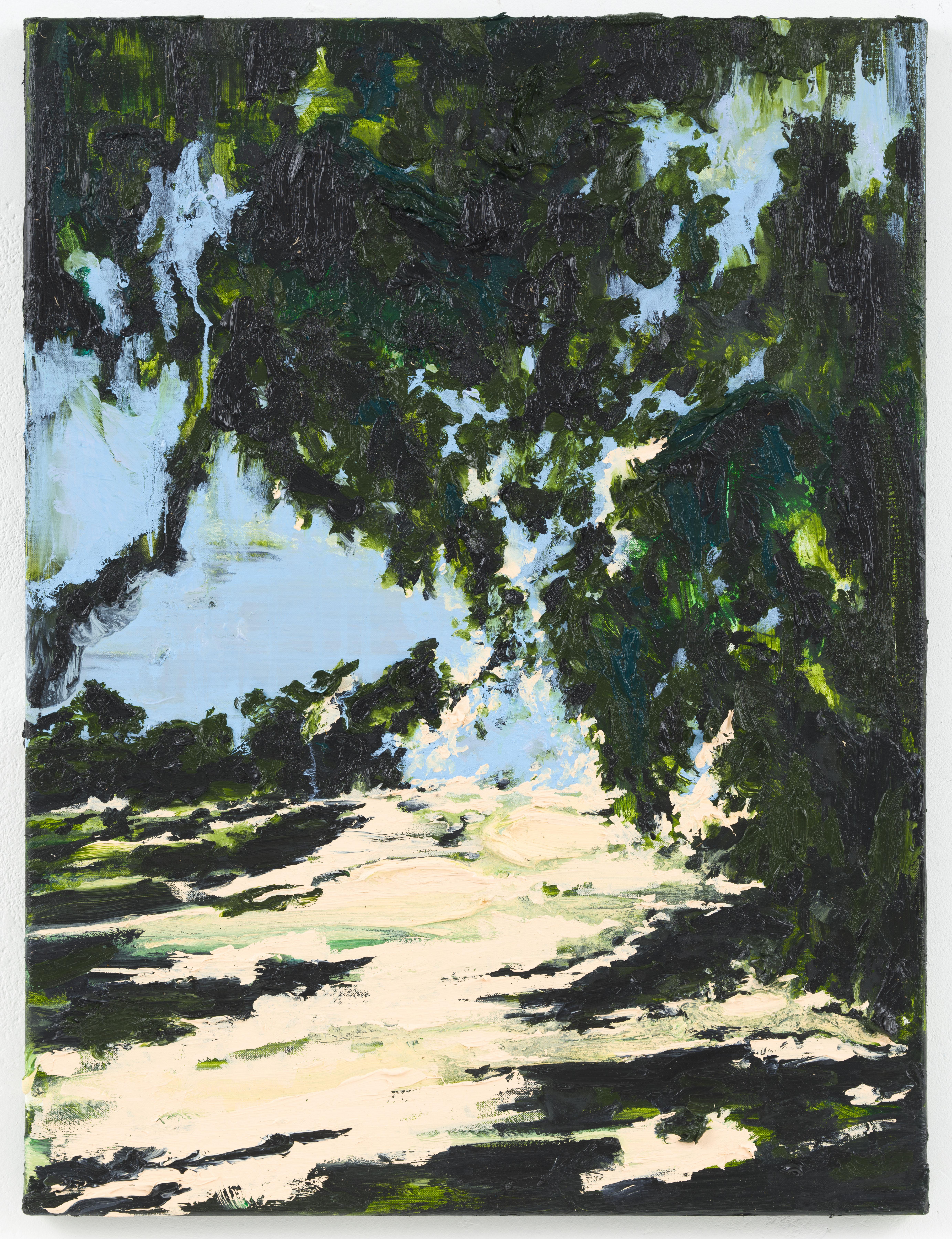 """Vagando"" 80 x 60 cm.oil on linen 2012"