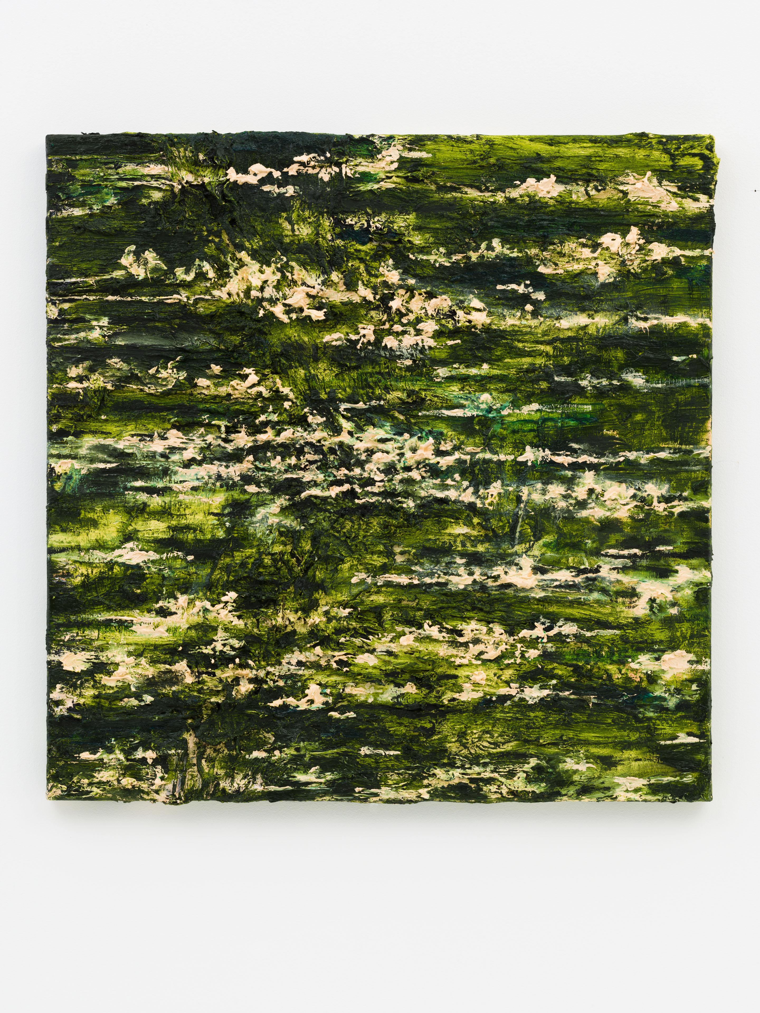 """Nympheas"" 60 x 60 cm. oil on linen 2014"