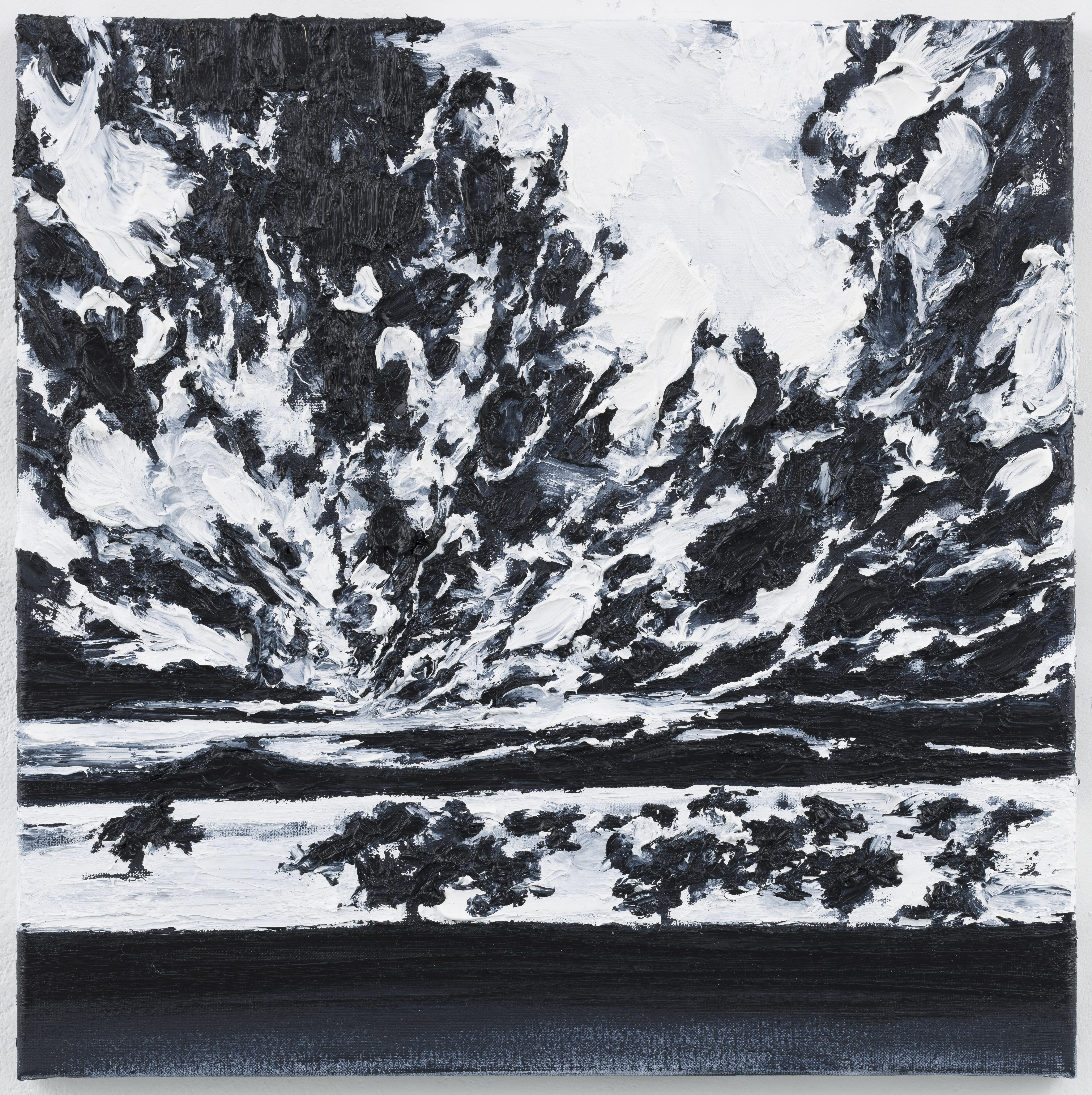 """""""Ceu Nublado"""" II 50 x 50 cm. oil on linen 2013"""