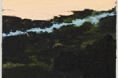 """""""Ribeiro de Sao Bras IX"""" 50 x 60 cm. oil on linen 2011"""