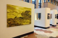"""""""Wandering"""", solo exhibition at Jeroen Bosch Ziekenhuis, 's-Hertogenbosch (2017)"""