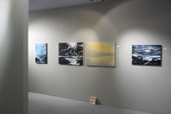 PAN Amsterdam, represented by Huub Hannen Galerie, RAI Amsterdam (2016)
