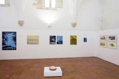 """""""Paraiso Escondido"""", solo exhibition at Galeria Municipal D. Dinis, Museu Prof. Joaquim Vermelho, Estremoz, Portugal (2017)"""
