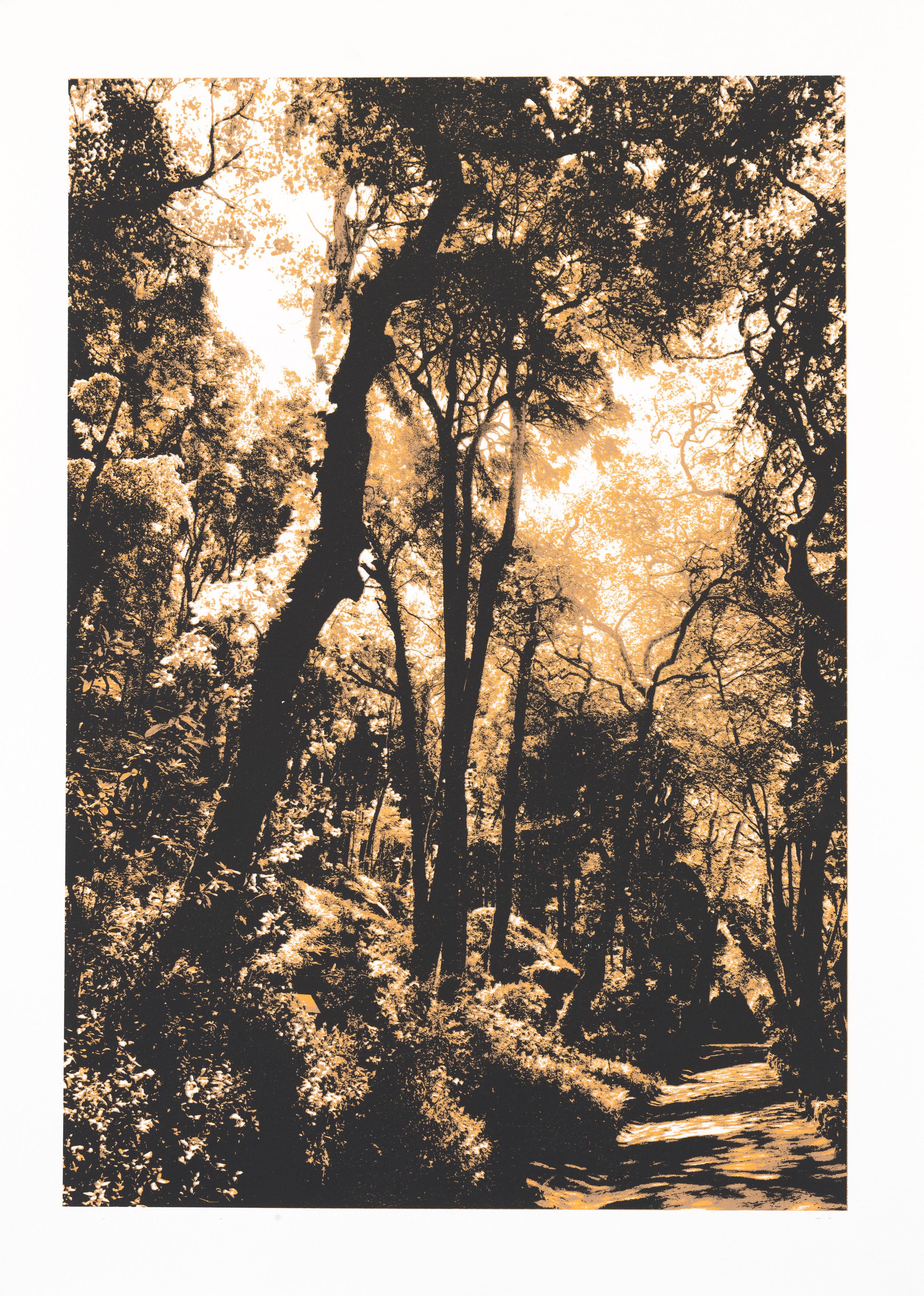 """""""So os caminhos eram meus"""" 70 x 50 cm. silkscreenprint (2011)"""