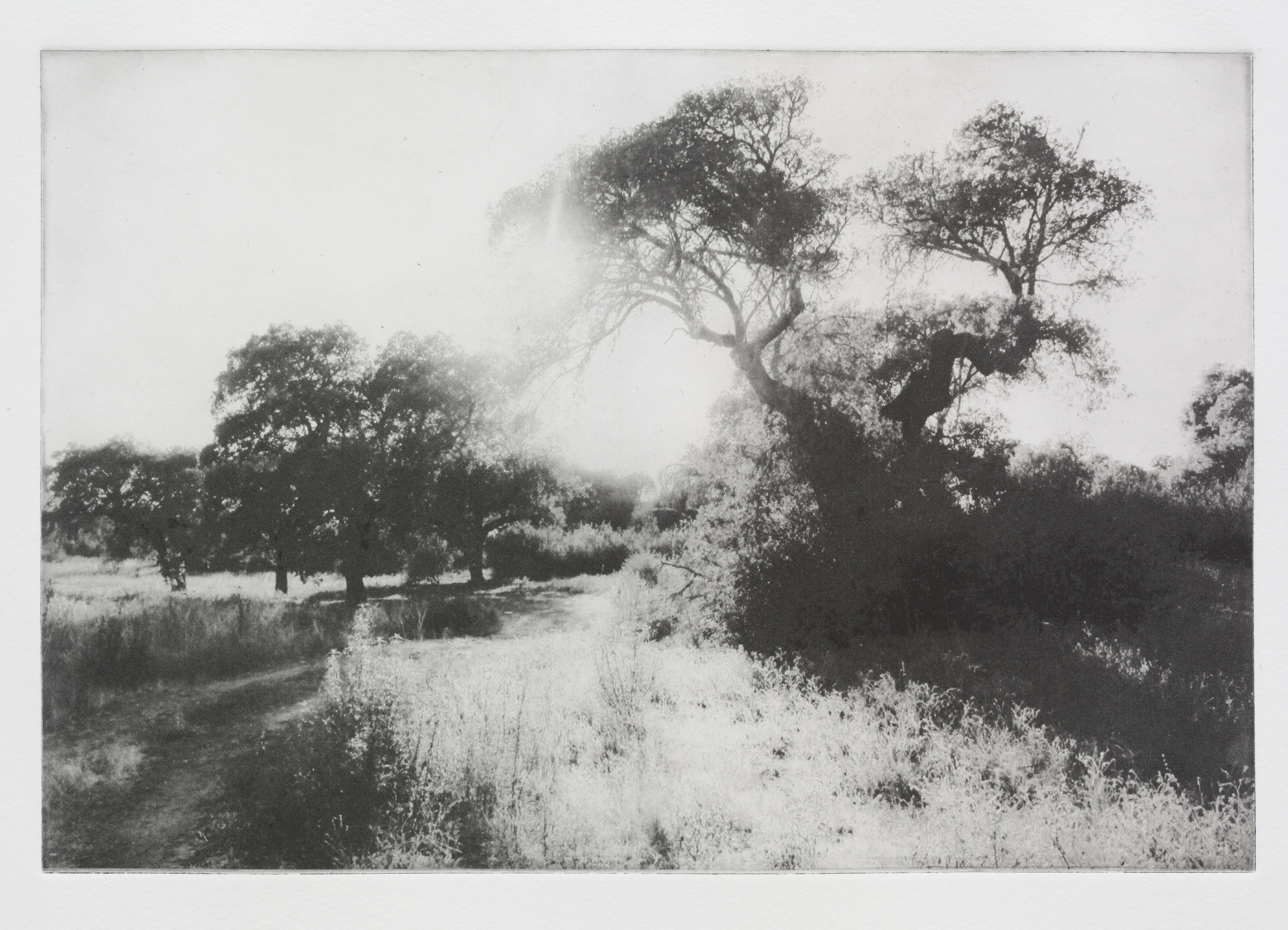 """""""Luz de Verao"""", 41 x 60 cm. toyobo print (2013)"""