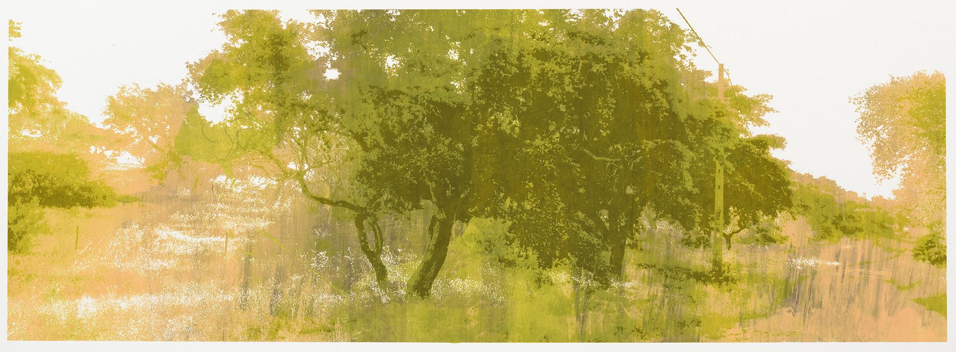 """Change of Seasons"" monotype 35 x 100 cm. silkscreenprint (2015)"
