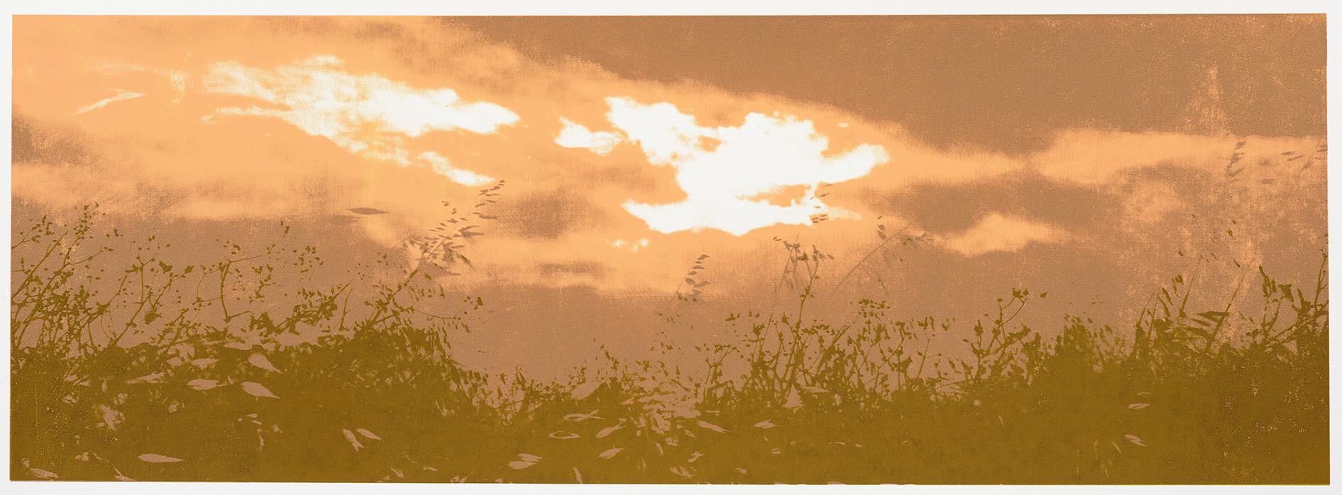 """Change of Seasons IV (fall)"", 35 x 100 cm. silkscreenprint (2015)"