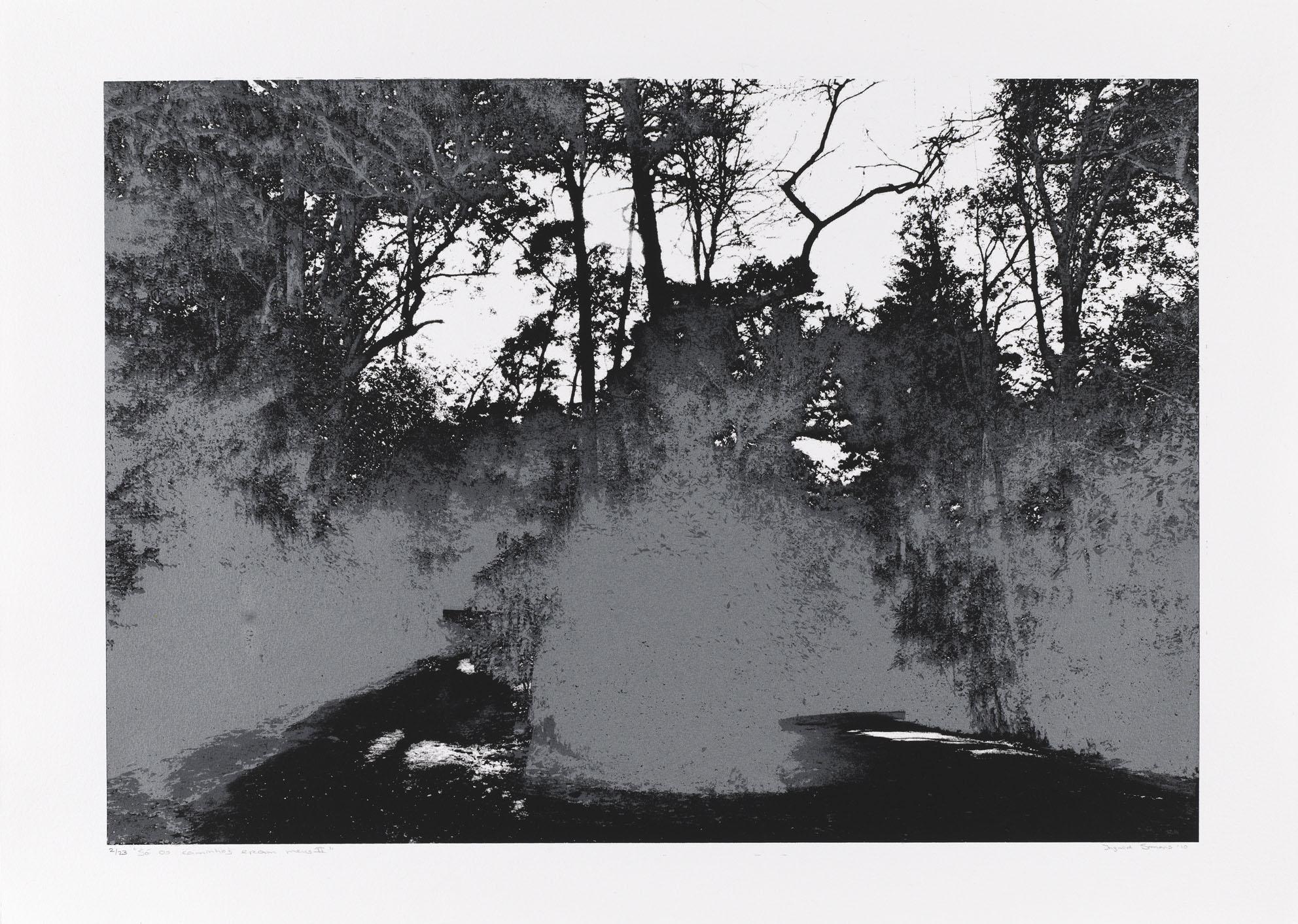 """""""So os caminhos eram meus II"""" 50 x 70 cm. silkscreenprint (2010)"""