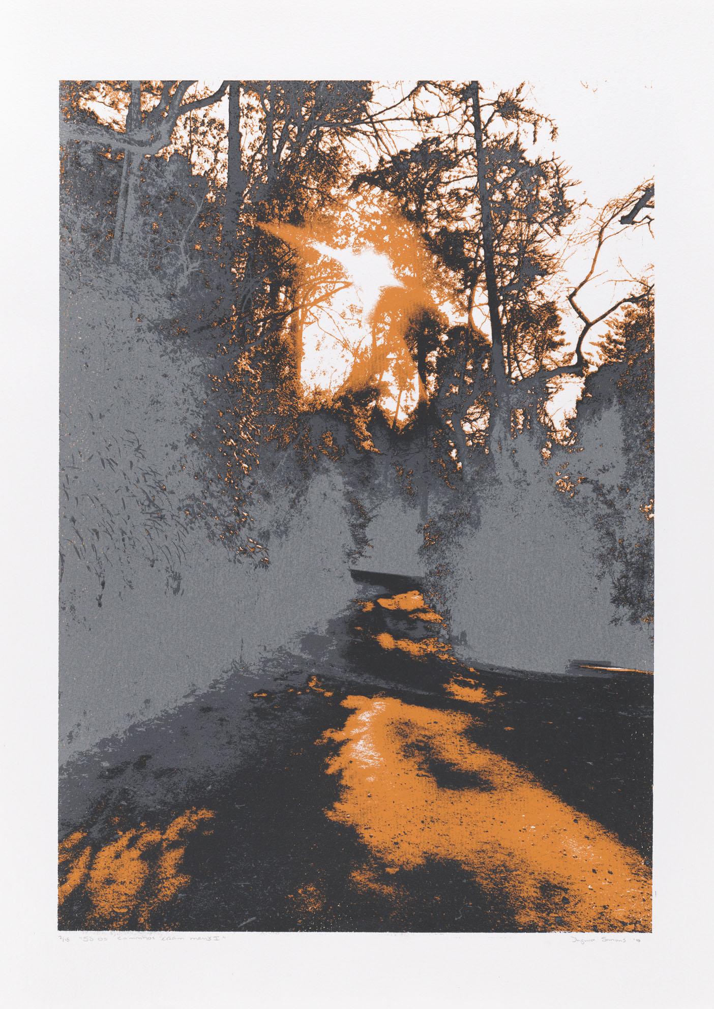 """""""So os caminhos eram meus I"""" 70 x 50 cm. silkscreenprint (2010)"""