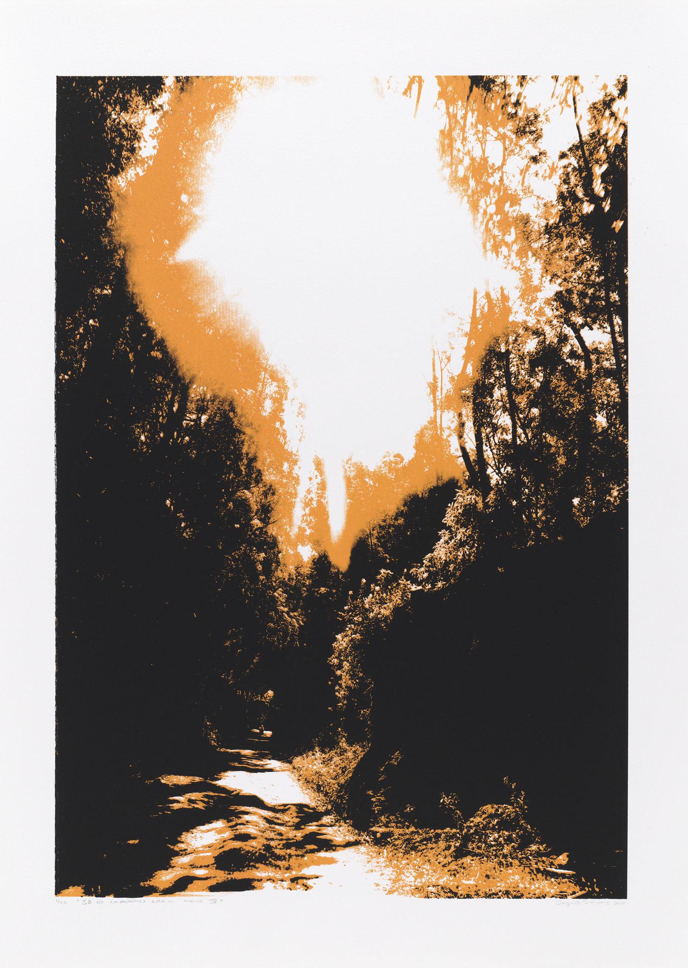 """""""So os caminhos eram meus IV"""", 70 x 50 cm. silkscreenprint"""