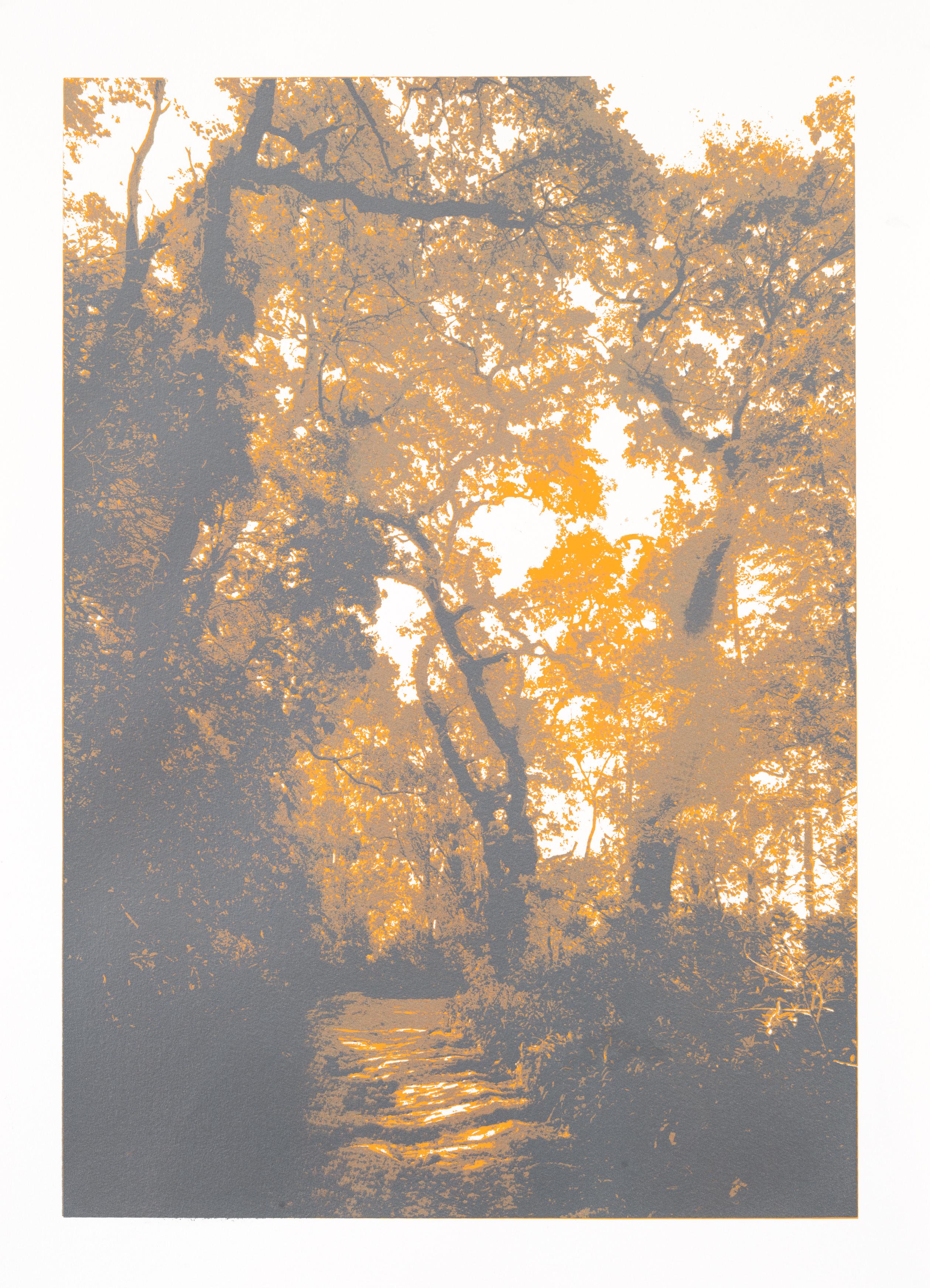 """""""So os caminhos eram meus V"""" 70 x 50 cm. silkscreenprint (2012)"""