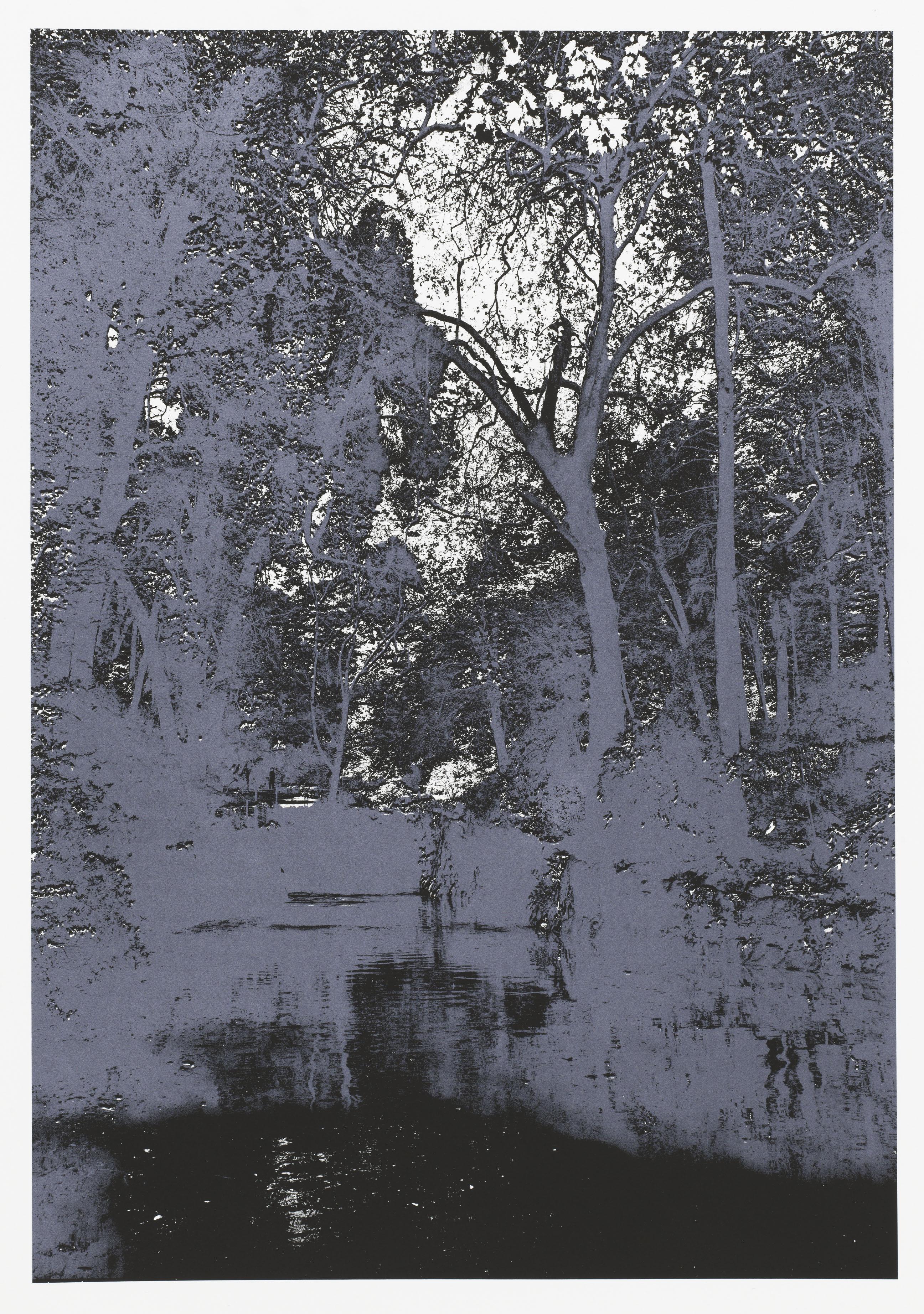 """""""So os caminhos eram meus VIII"""" 70 x 50 cm. silkcreenprint (2012)"""