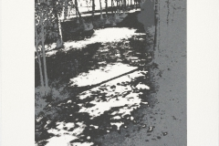 """""""Liebermann's Garten II"""" 31 x 21,5 cm. silkscreenprint (2010)"""