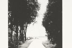"""""""Wander I""""57 x 38 cm. toyobo print (2008)"""