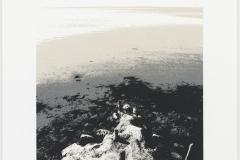 """Etang de Vaccares"" 38,5 x 27,5 cm. silkscreenprint (2011)"