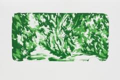 """Waldsicht"" 41,5 x 29,9 cm. lithography (2014)"