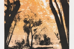 """""""So os caminhos eram meus XII"""" 70 x 50 cm. silkscreenprint (2013)"""