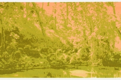 """Change of Seasons II (spring)"", 35 x 100 cm. silkscreenprint (2015)"