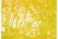 """Lente"" 19,5 x 19,5 cm. silkscreenprint (2016)"