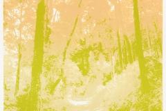 """Zomer"" 19,5 x 19,5 cm. silkscreenprint (2016)"