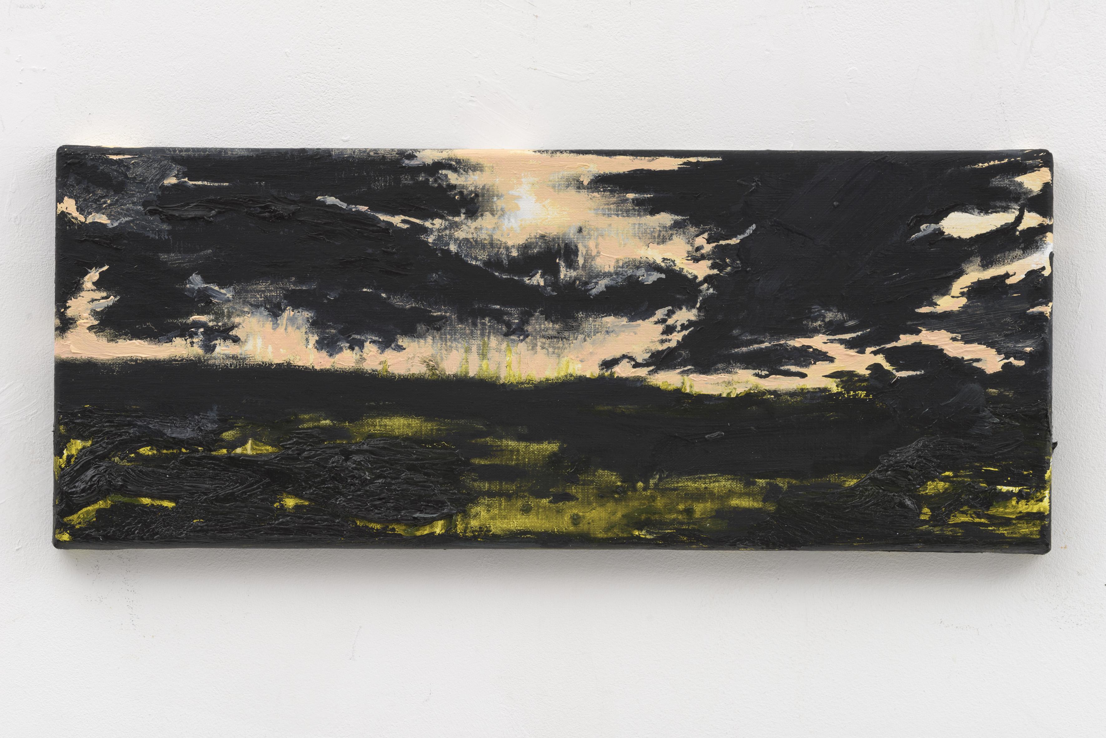 """Resonating Landscapes IX"" 20 x 50 cm. oil on linen 2017"