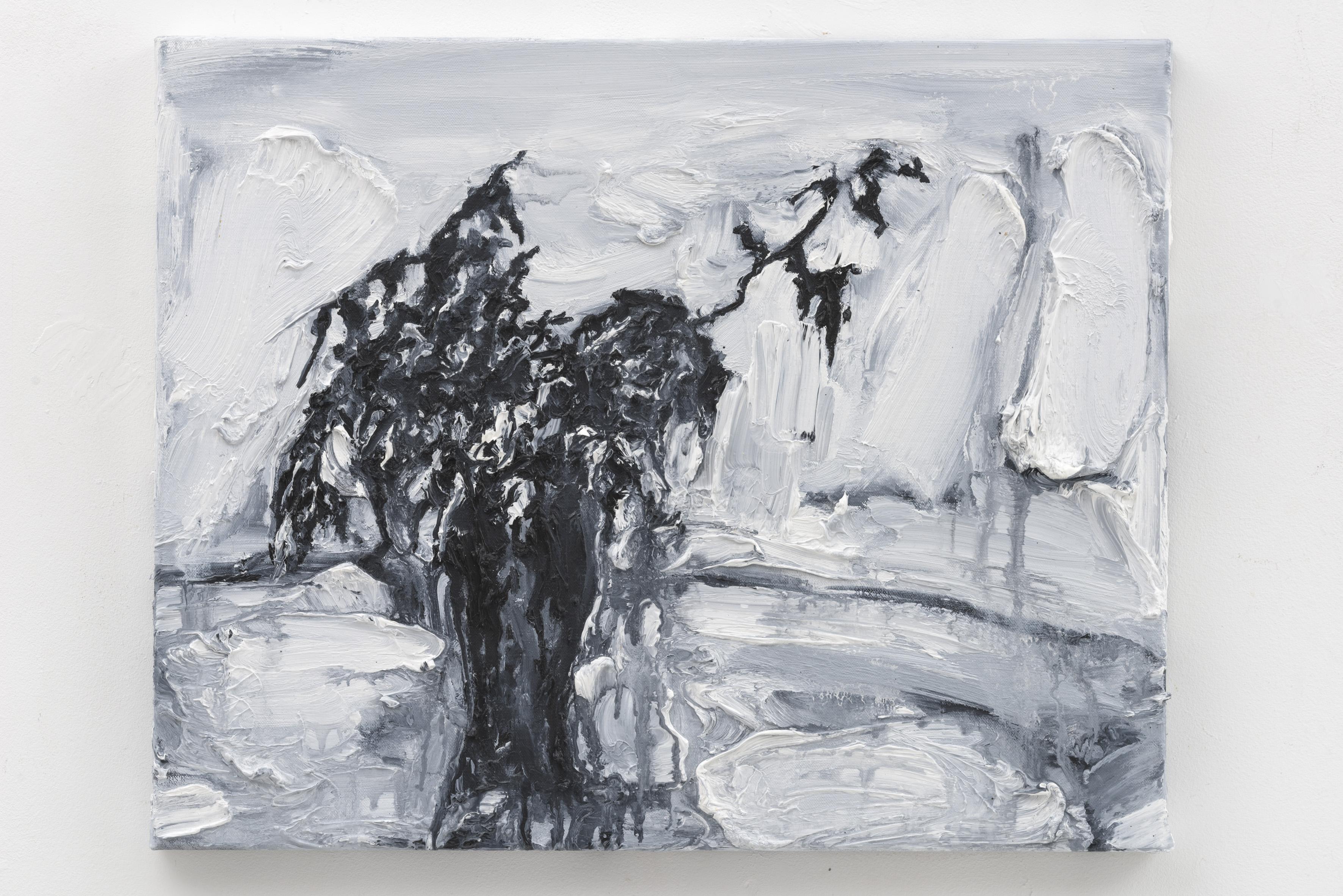 """Dessecado II"", 50 x 40 cm., oil on linen 2017 (Portugal)"