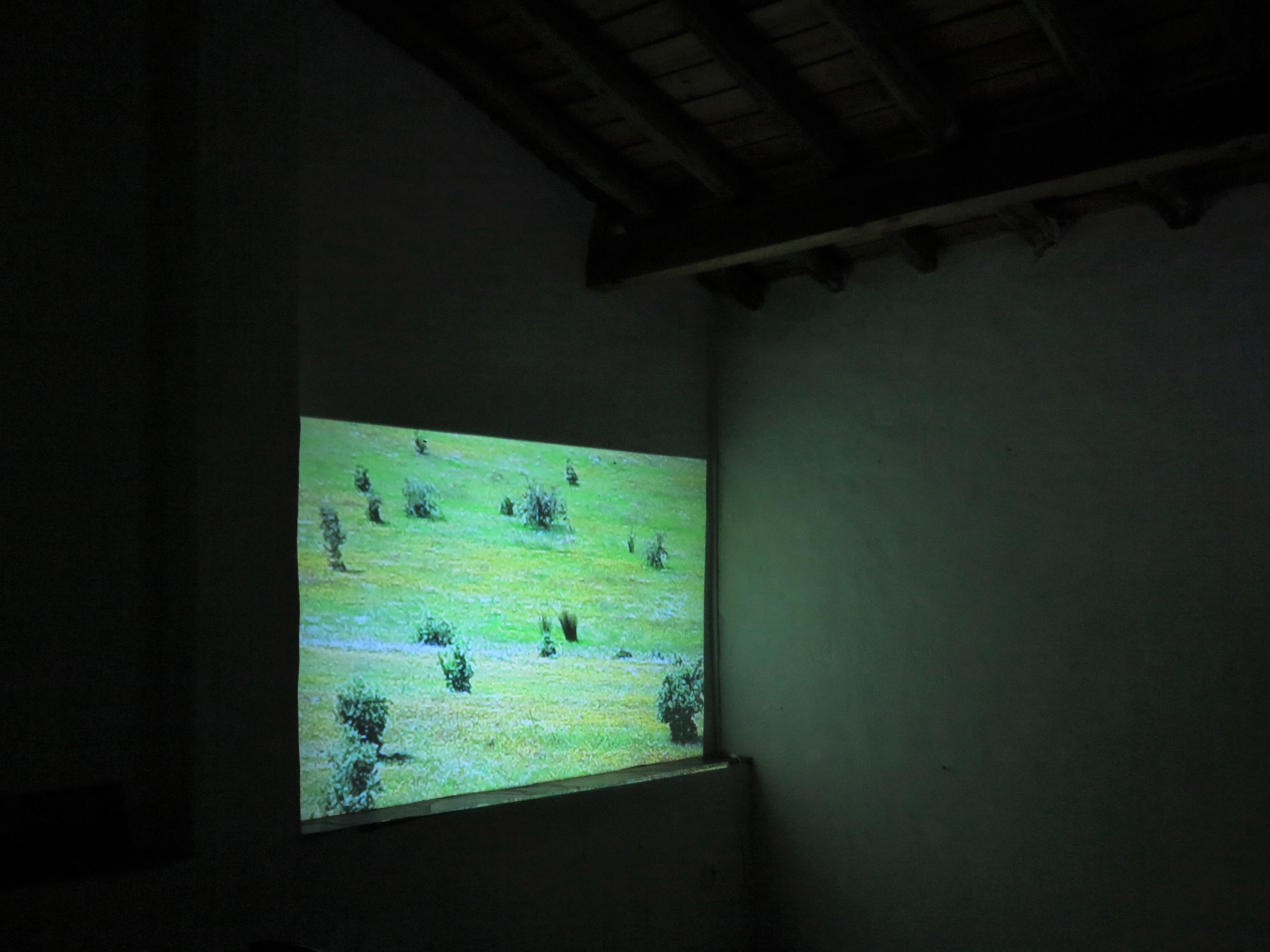 """Presentation of short film """"Força do Vento"""", Fundacao Obras, Portugal (2018)"""