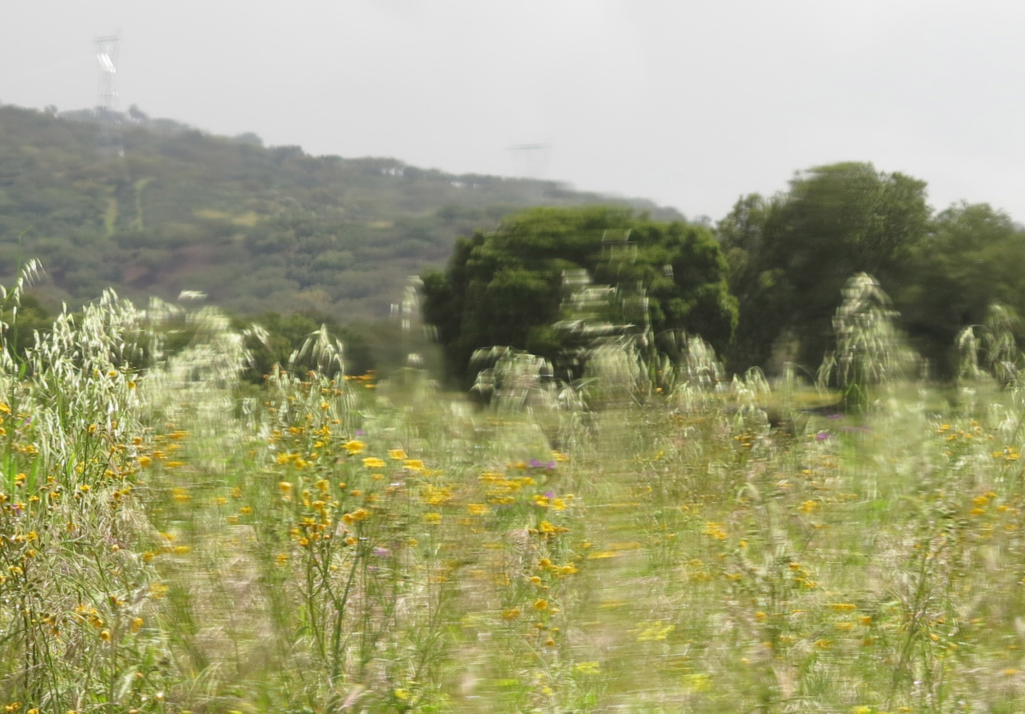 """Still from short film """"Chuva (Portugal)"""", (1 minute, 2016)"""