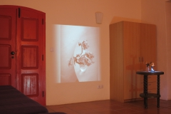"Installation ""Dessecado"" in cooperation with Beate Schnaitmann (cellist), Fundacao Obras, Portugal"